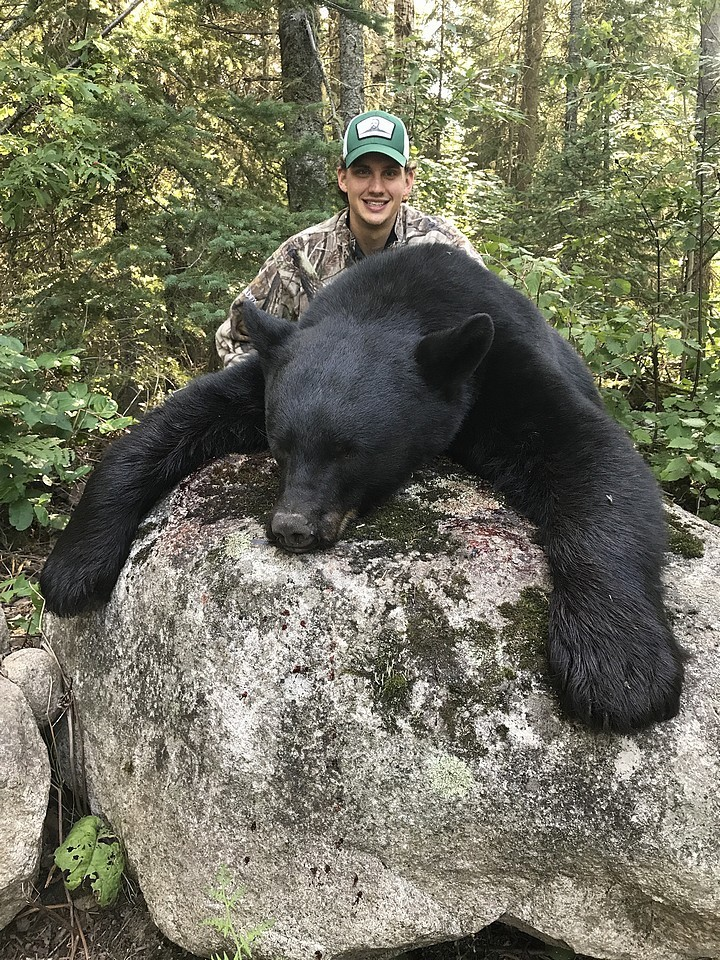 Hunt Black Bear at Whitefish Lodge and Outpost Camps